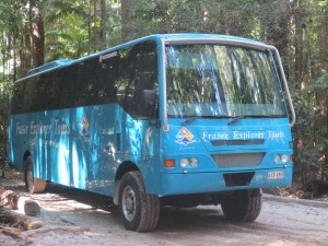 Our Fraser Island chariot