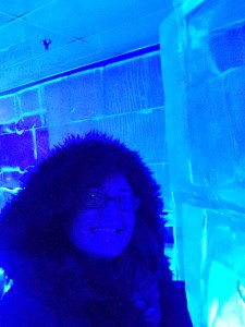 Chilling' in the Ice Bar
